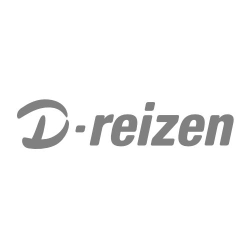 D-Reizen_Grey_Logo